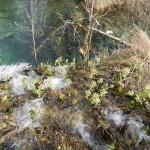 2014-03-15-Plitivce-Klaudia-36