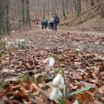 2015-03-14-Belecgrad-07